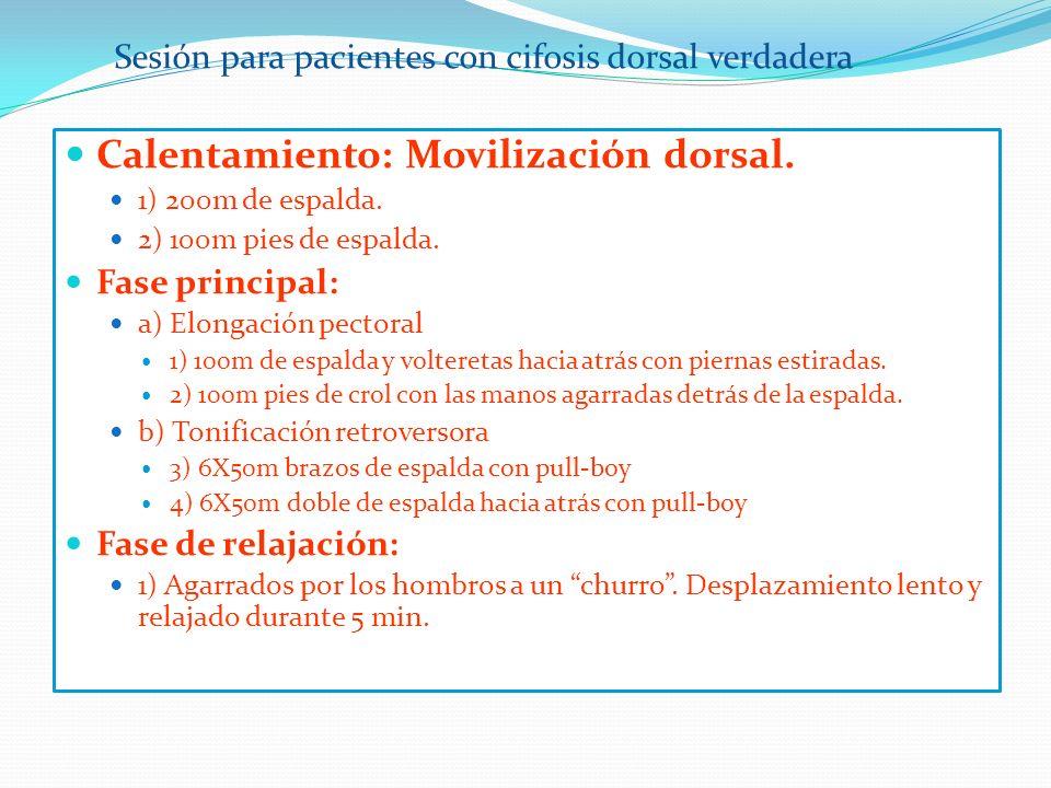 Calentamiento: Movilización dorsal.