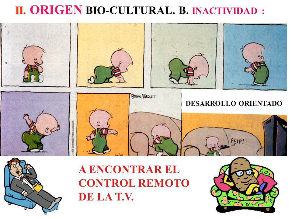 II. ORIGEN BIO-CULTURAL. B. INACTIVIDAD :