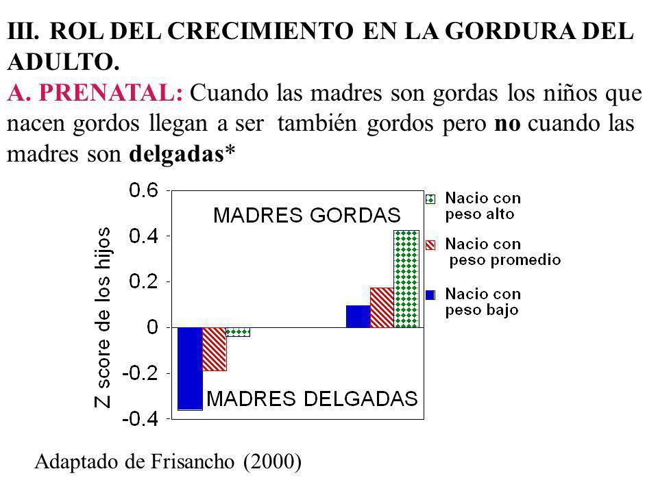 III. ROL DEL CRECIMIENTO EN LA GORDURA DEL ADULTO.