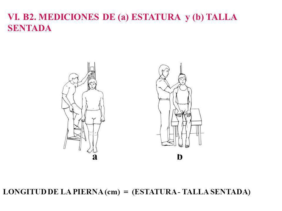 a b VI. B2. MEDICIONES DE (a) ESTATURA y (b) TALLA SENTADA