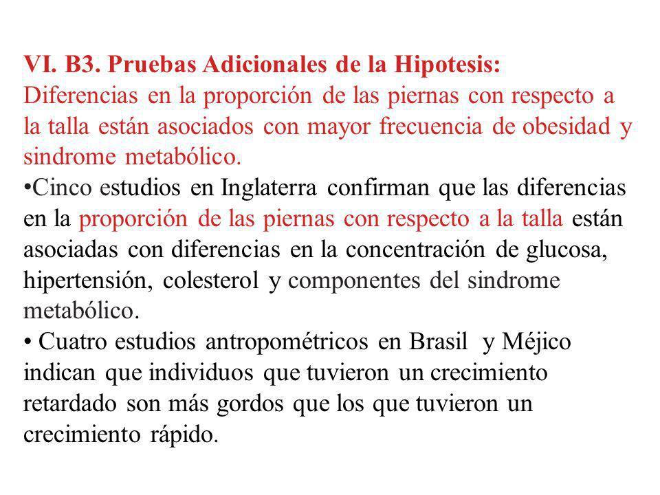 VI. B3. Pruebas Adicionales de la Hipotesis:
