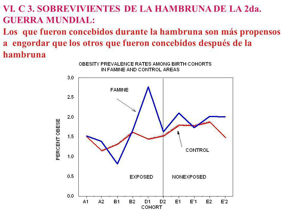 VI. C 3. SOBREVIVIENTES DE LA HAMBRUNA DE LA 2da. GUERRA MUNDIAL:
