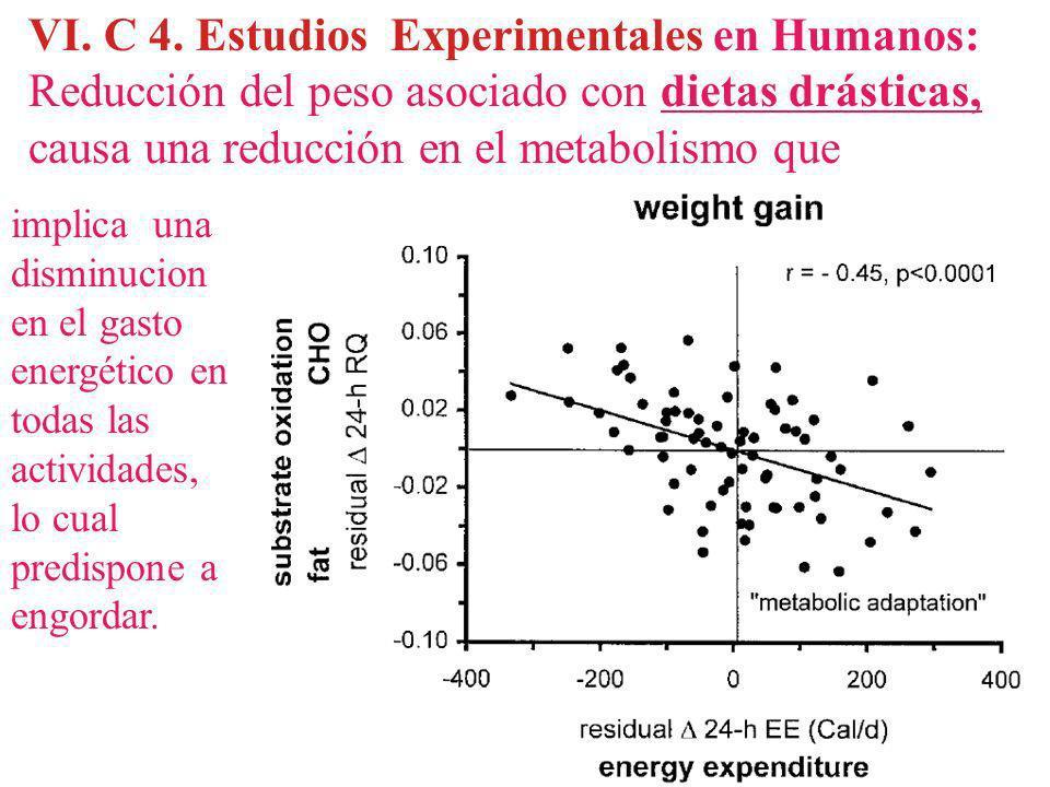 VI. C 4. Estudios Experimentales en Humanos: Reducción del peso asociado con dietas drásticas, causa una reducción en el metabolismo que