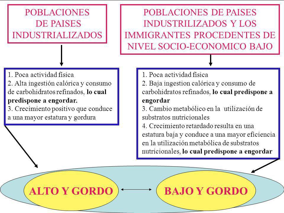 IMMIGRANTES PROCEDENTES DE NIVEL SOCIO-ECONOMICO BAJO
