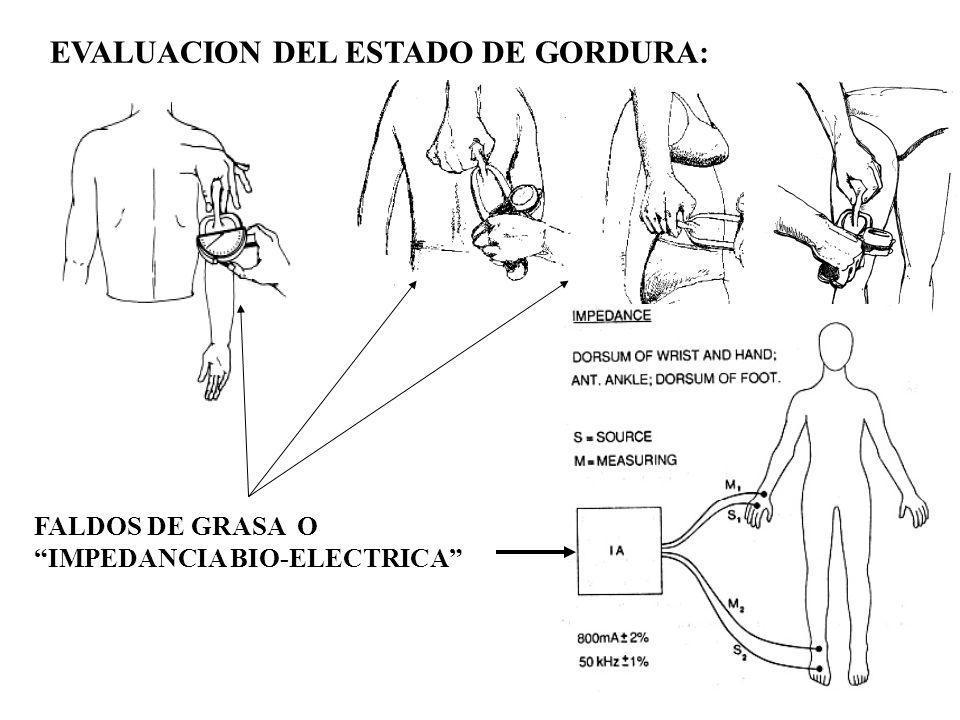 EVALUACION DEL ESTADO DE GORDURA: