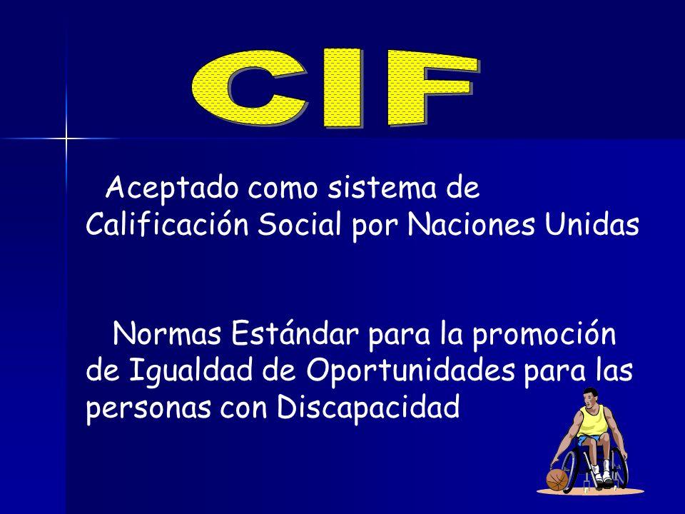 CIF Aceptado como sistema de Calificación Social por Naciones Unidas