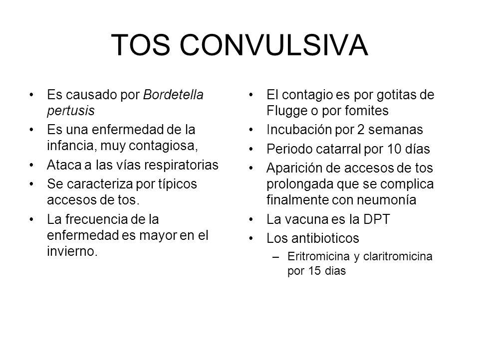 TOS CONVULSIVA Es causado por Bordetella pertusis