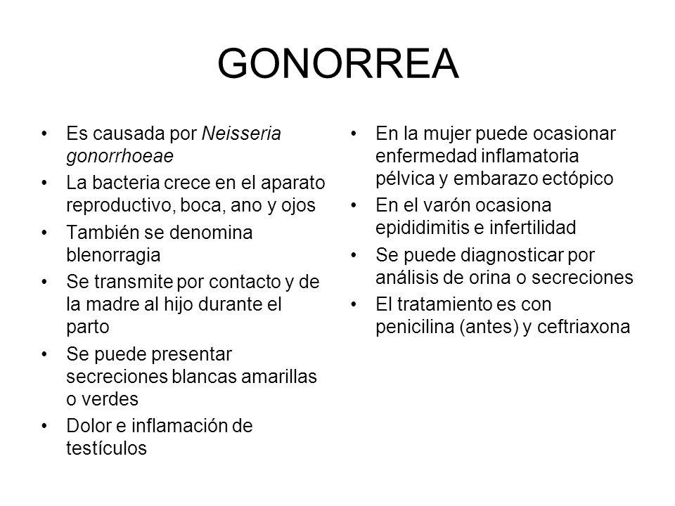 GONORREA Es causada por Neisseria gonorrhoeae