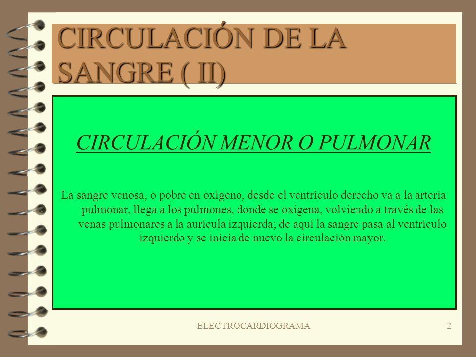 CIRCULACIÓN DE LA SANGRE ( II)