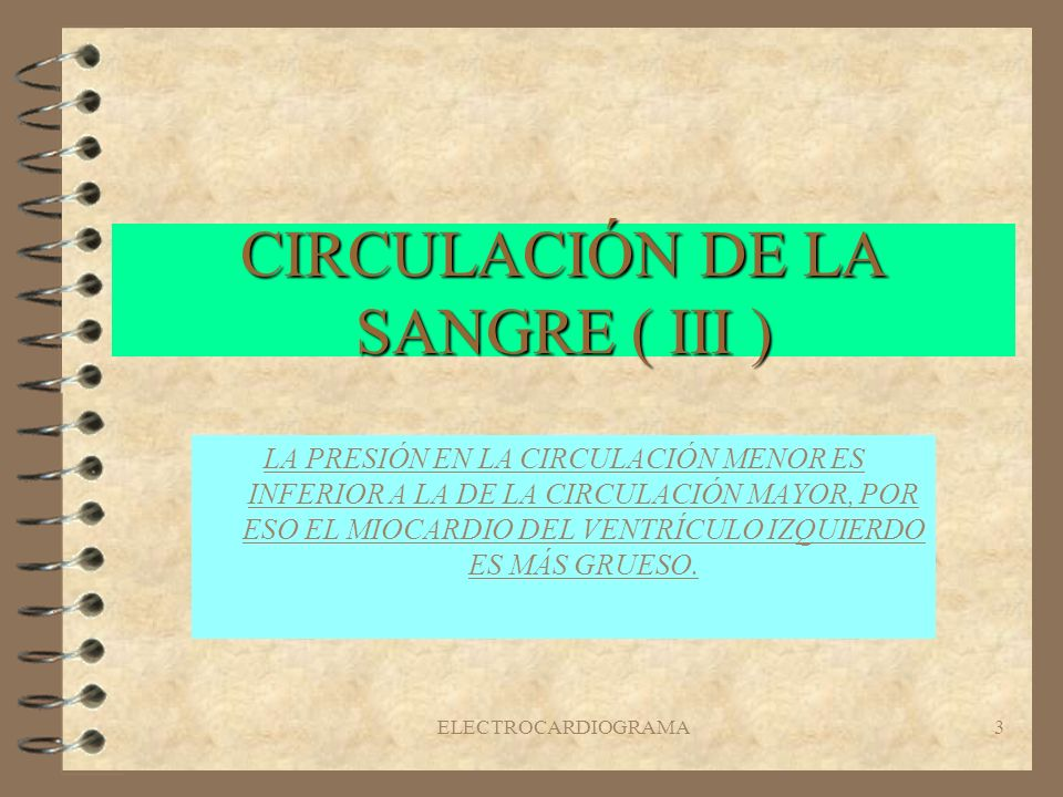 CIRCULACIÓN DE LA SANGRE ( III )