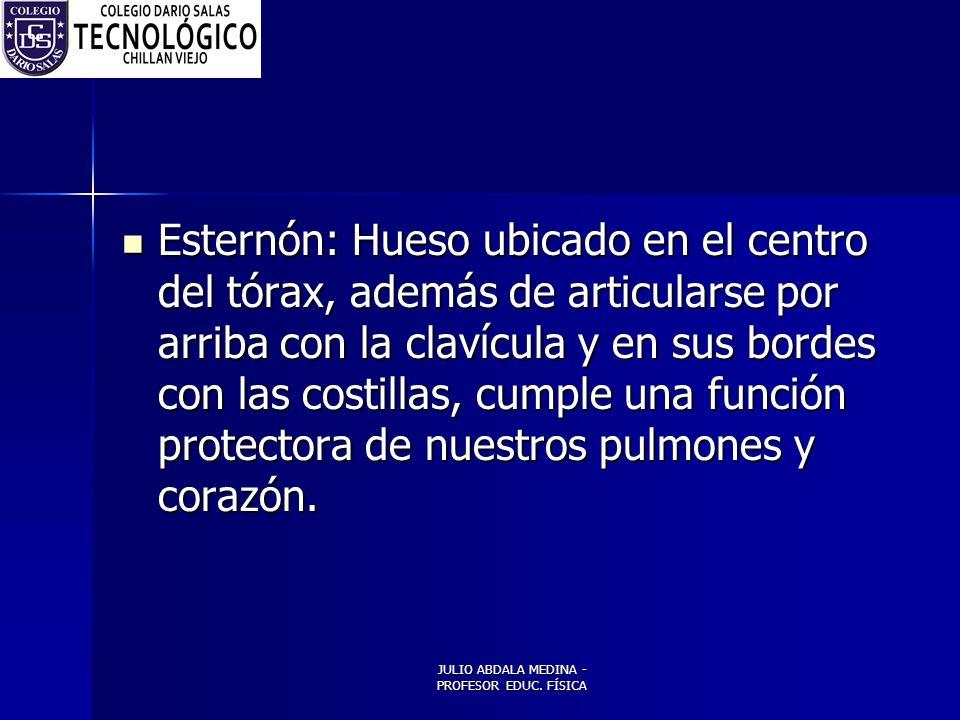 JULIO ABDALA MEDINA - PROFESOR EDUC. FÍSICA