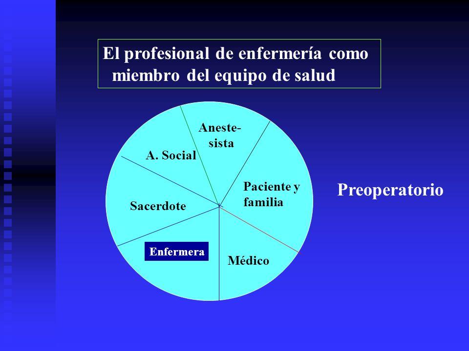 El profesional de enfermería como miembro del equipo de salud