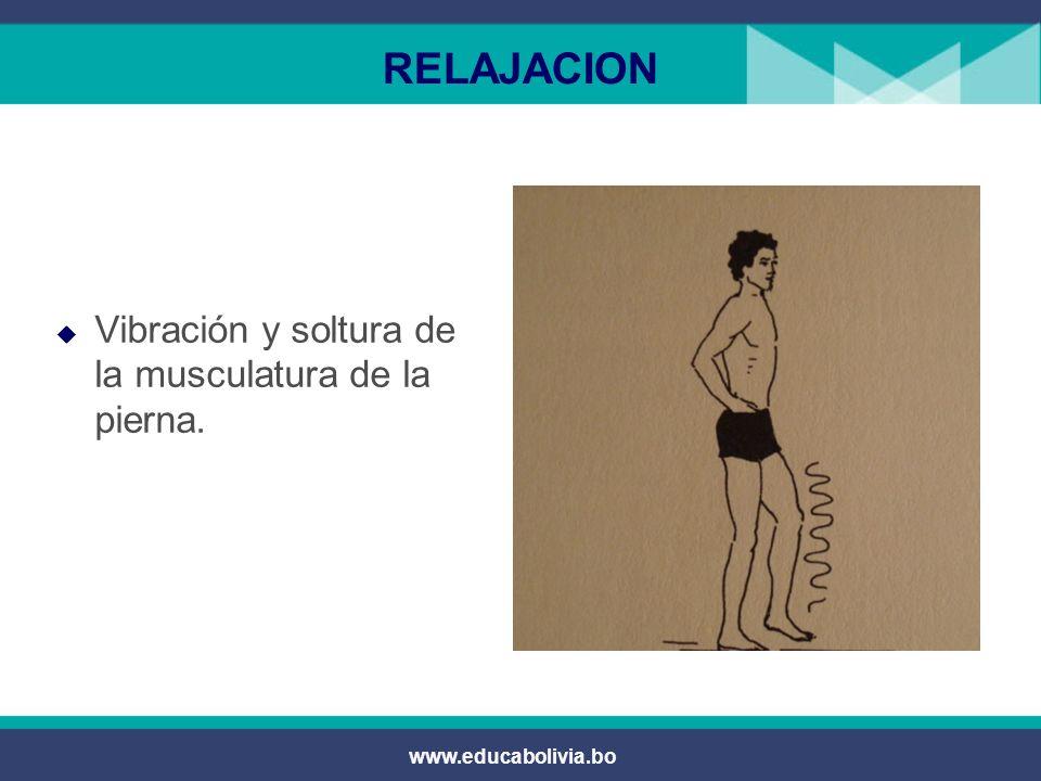 RELAJACION Vibración y soltura de la musculatura de la pierna.