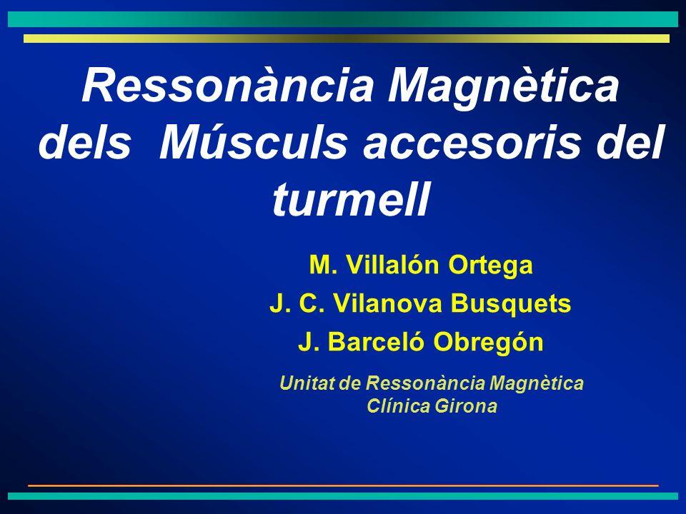 M. Villalón Ortega J. C. Vilanova Busquets J. Barceló Obregón
