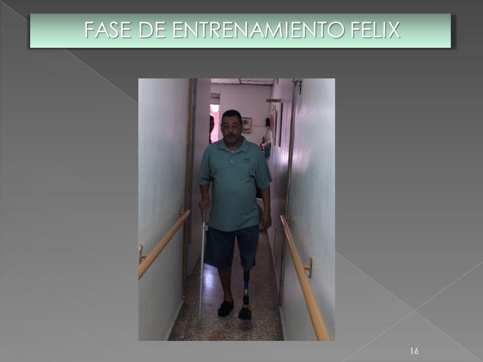 FASE DE ENTRENAMIENTO FELIX