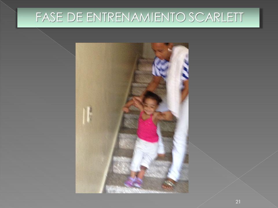 FASE DE ENTRENAMIENTO SCARLETT