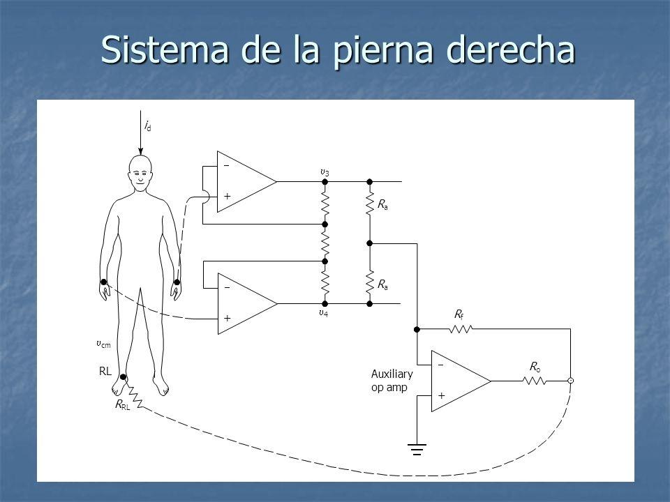 Sistema de la pierna derecha