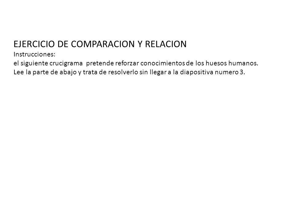 EJERCICIO DE COMPARACION Y RELACION Instrucciones: el siguiente crucigrama pretende reforzar conocimientos de los huesos humanos.