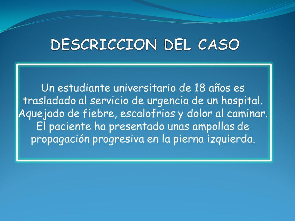 DESCRICCION DEL CASO