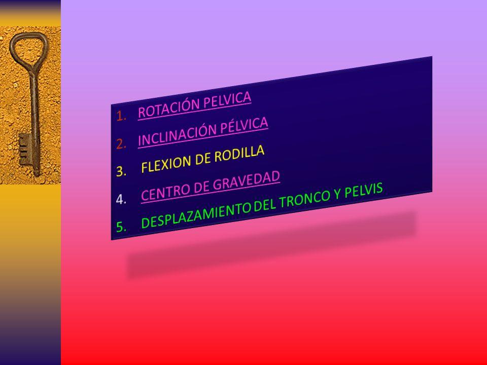 ROTACIÓN PELVICA INCLINACIÓN PÉLVICA. FLEXION DE RODILLA.