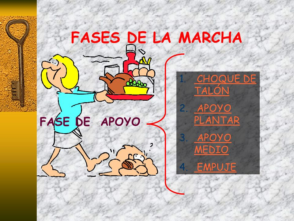 FASES DE LA MARCHA FASE DE APOYO CHOQUE DE TALÓN APOYO PLANTAR