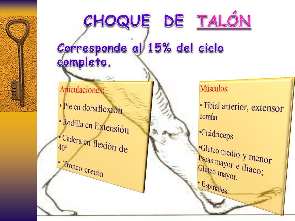 CHOQUE DE TALÓN Corresponde al 15% del ciclo completo. Músculos: