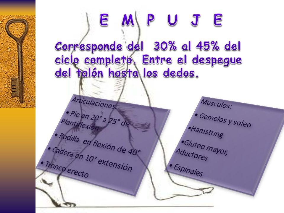 E M P U J E Corresponde del 30% al 45% del ciclo completo. Entre el despegue del talón hasta los dedos.