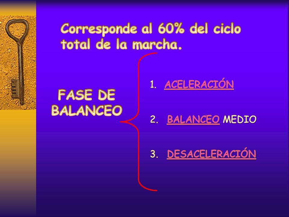 Corresponde al 60% del ciclo total de la marcha.