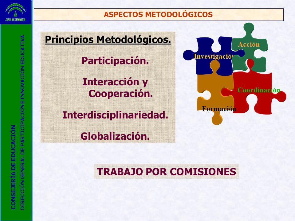 Principios Metodológicos. Participación. Interacción y Cooperación.