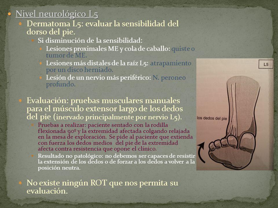 Nivel neurológico L5 Dermatoma L5: evaluar la sensibilidad del dorso del pie. Si disminución de la sensibilidad: