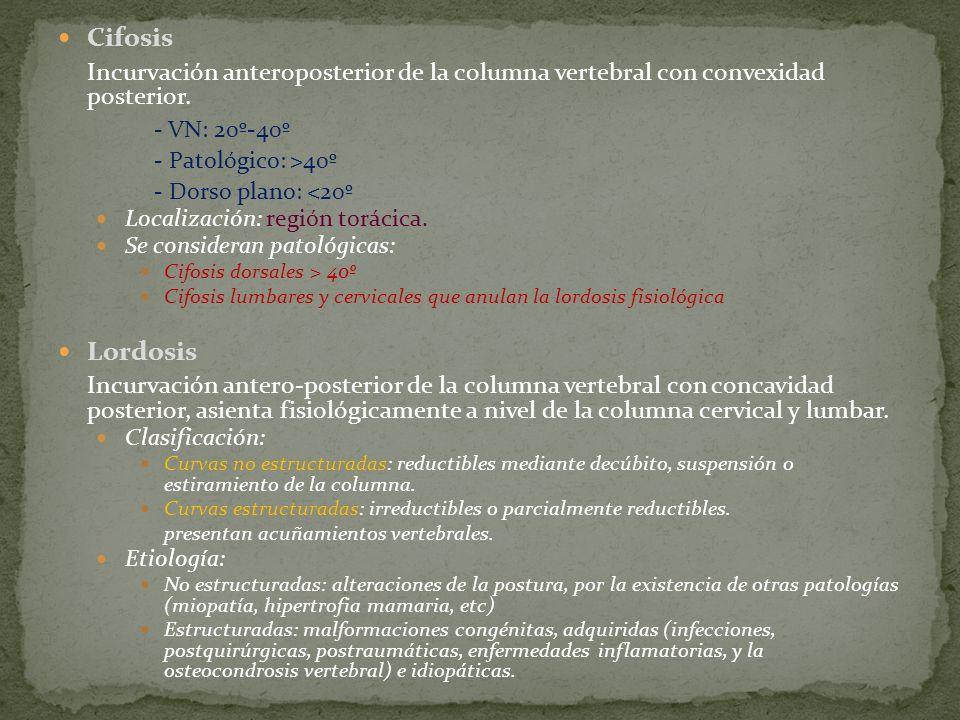 Cifosis Incurvación anteroposterior de la columna vertebral con convexidad posterior. - VN: 20º-40º.
