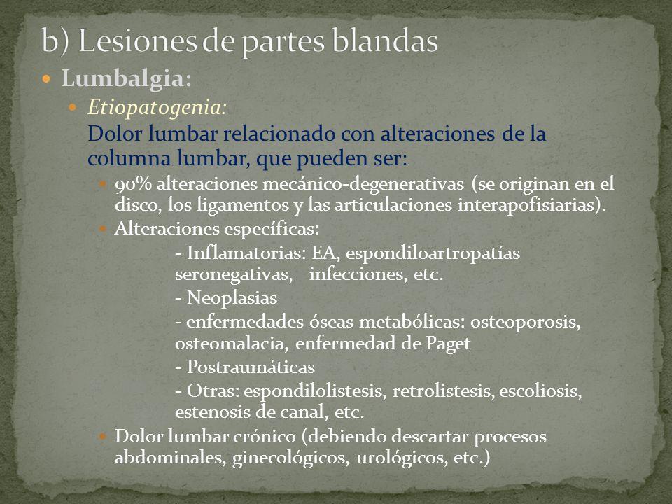 b) Lesiones de partes blandas