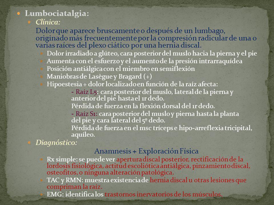 Anamnesis + Exploración Física