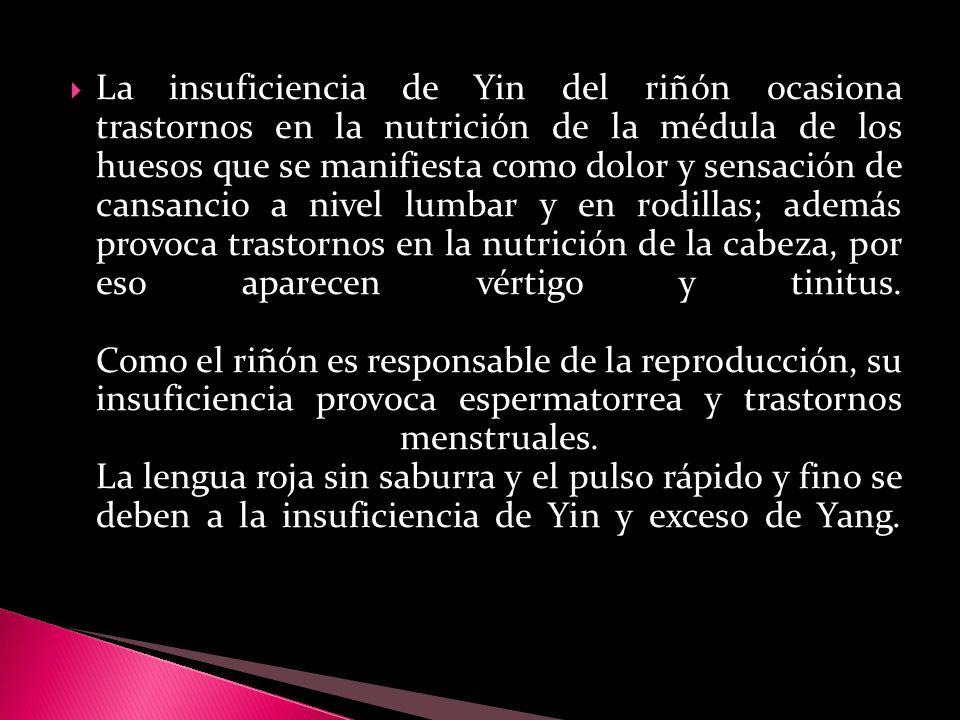 La insuficiencia de Yin del riñón ocasiona trastornos en la nutrición de la médula de los huesos que se manifiesta como dolor y sensación de cansancio a nivel lumbar y en rodillas; además provoca trastornos en la nutrición de la cabeza, por eso aparecen vértigo y tinitus.