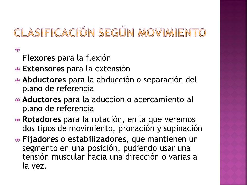 Clasificación según movimiento