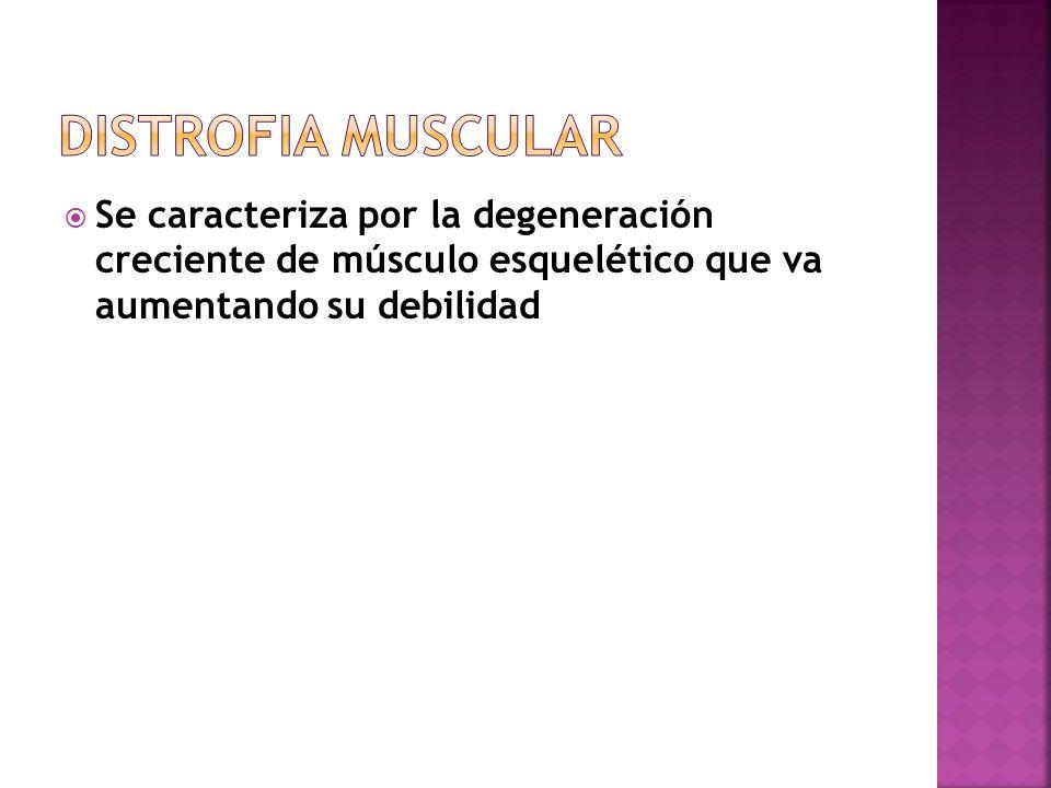 Distrofia Muscular Se caracteriza por la degeneración creciente de músculo esquelético que va aumentando su debilidad.