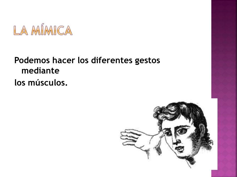 La Mímica Podemos hacer los diferentes gestos mediante los músculos.