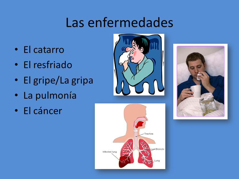 Las enfermedades El catarro El resfriado El gripe/La gripa La pulmonía