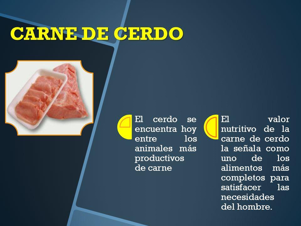 CARNE DE CERDO El cerdo se encuentra hoy entre los animales más productivos de carne.