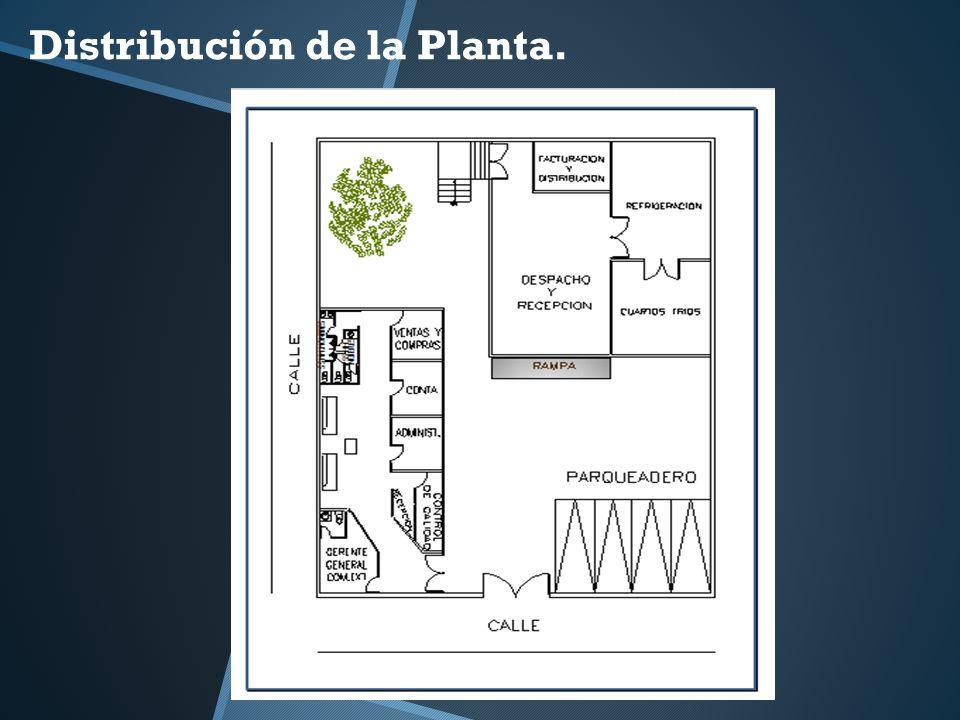 Distribución de la Planta.