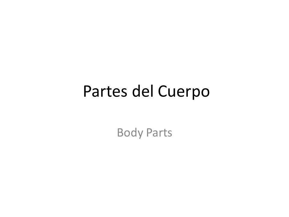 Partes del Cuerpo Body Parts