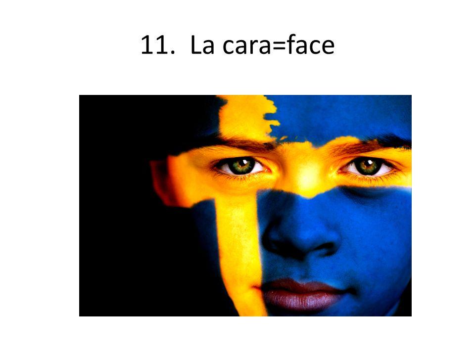 11. La cara=face