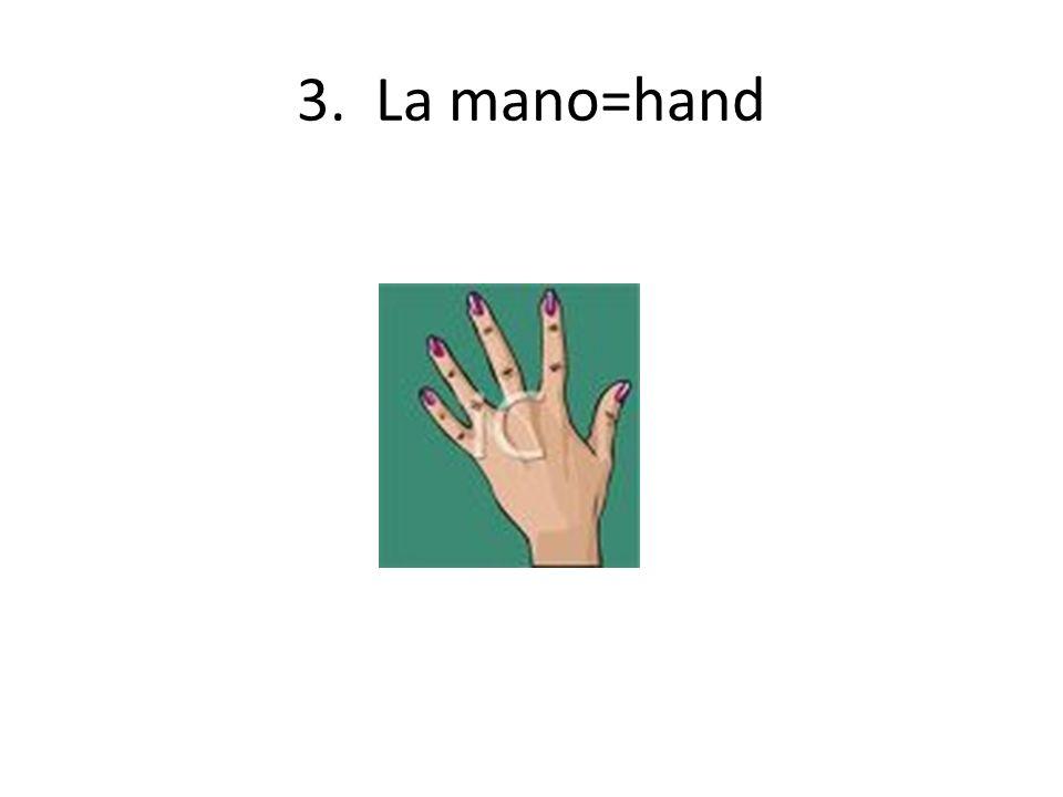 3. La mano=hand