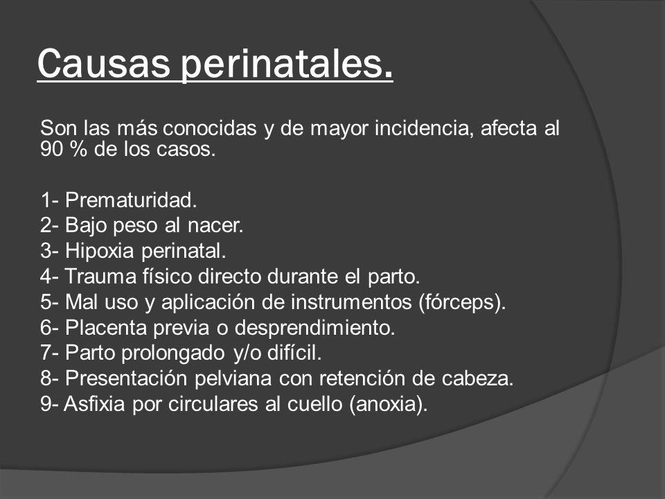Causas perinatales. Son las más conocidas y de mayor incidencia, afecta al 90 % de los casos. 1- Prematuridad.