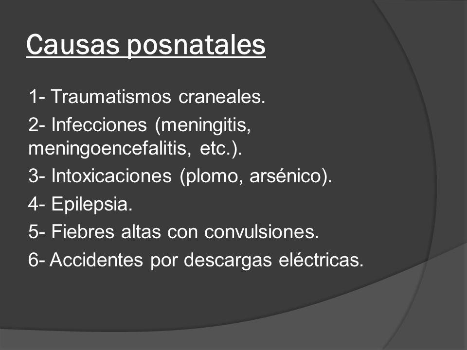 Causas posnatales 1- Traumatismos craneales.