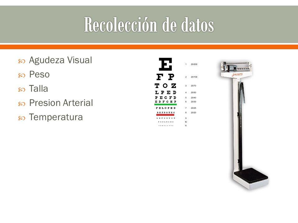 Recolección de datos Agudeza Visual Peso Talla Presion Arterial