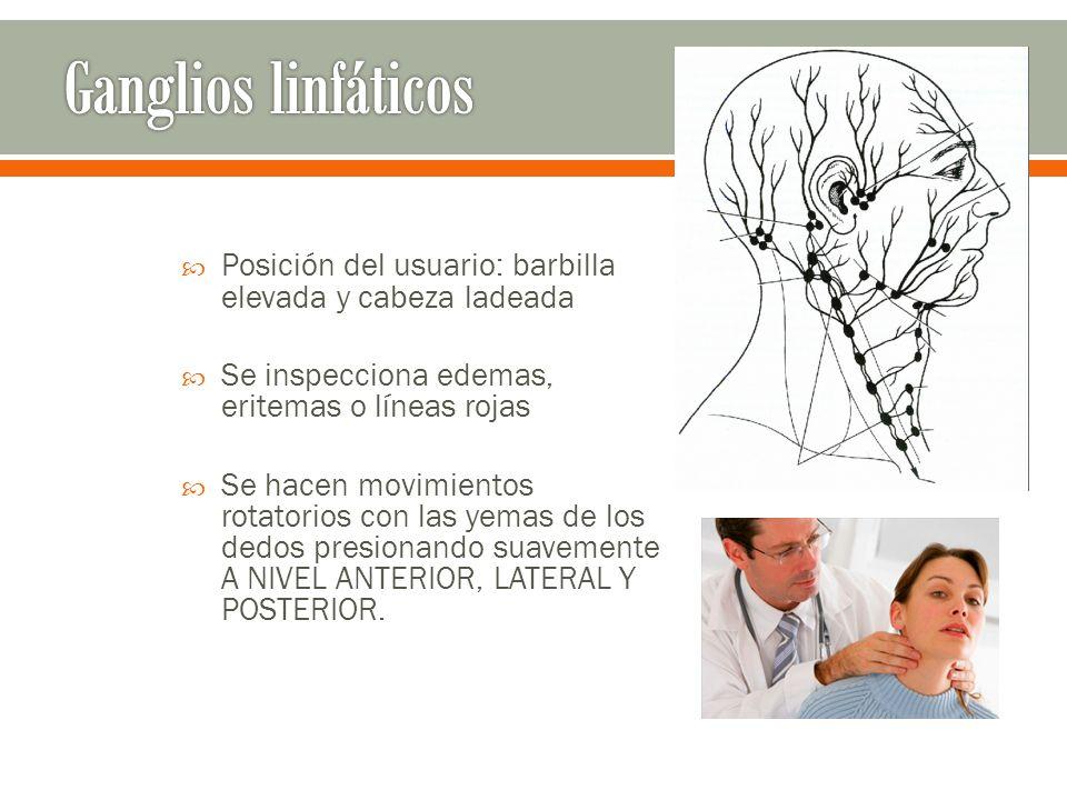 Ganglios linfáticos Posición del usuario: barbilla elevada y cabeza ladeada. Se inspecciona edemas, eritemas o líneas rojas.
