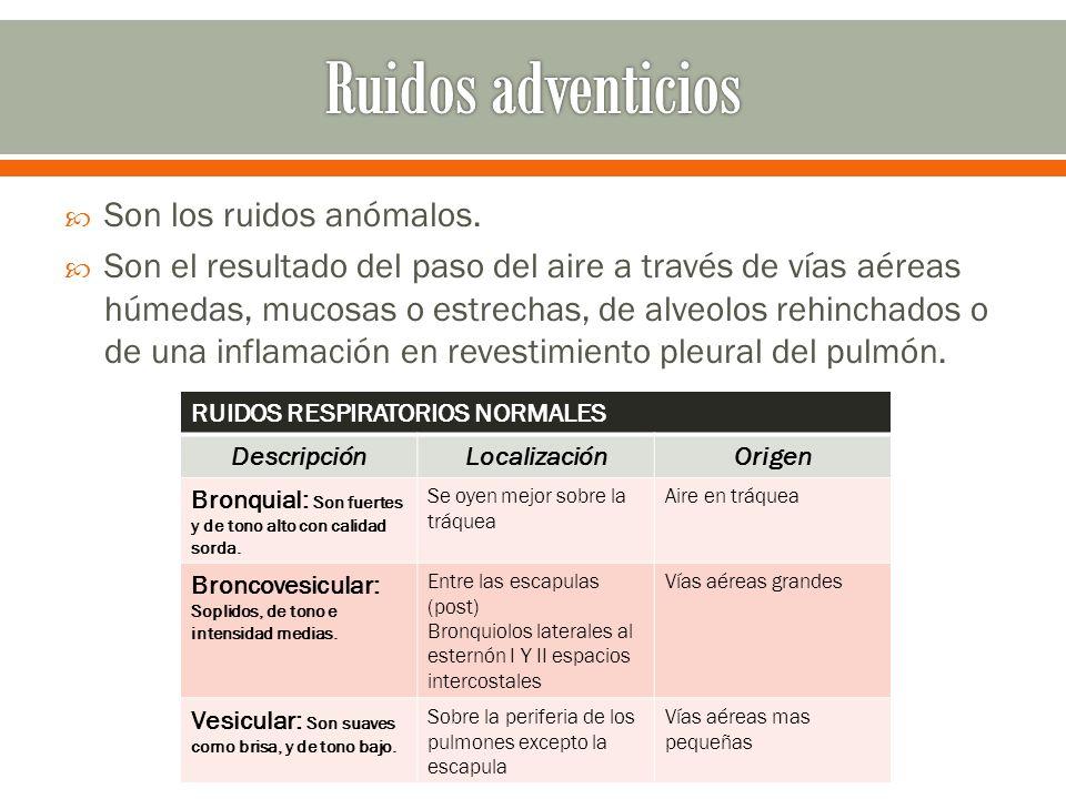 Ruidos adventicios Son los ruidos anómalos.