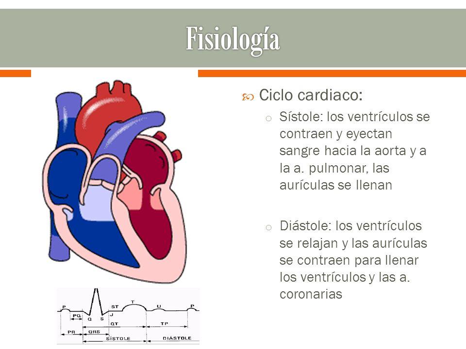 Fisiología Ciclo cardiaco: