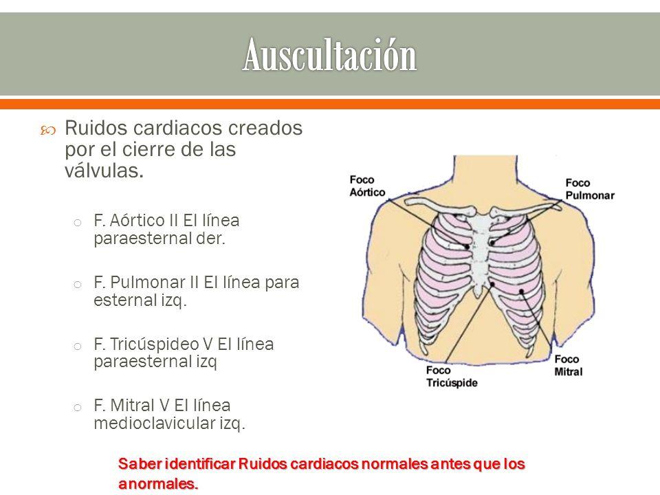 Auscultación Ruidos cardiacos creados por el cierre de las válvulas.